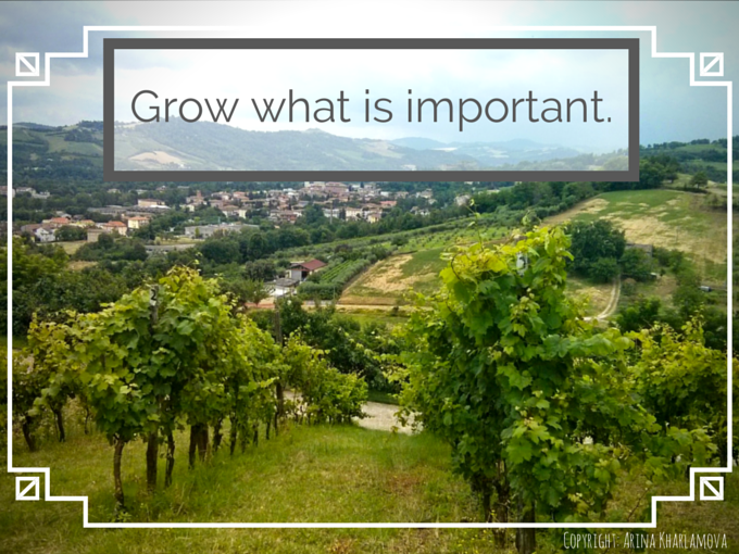 Grow what is important.